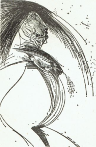 A pregnant woman, ink 1974 (50x70cm.)